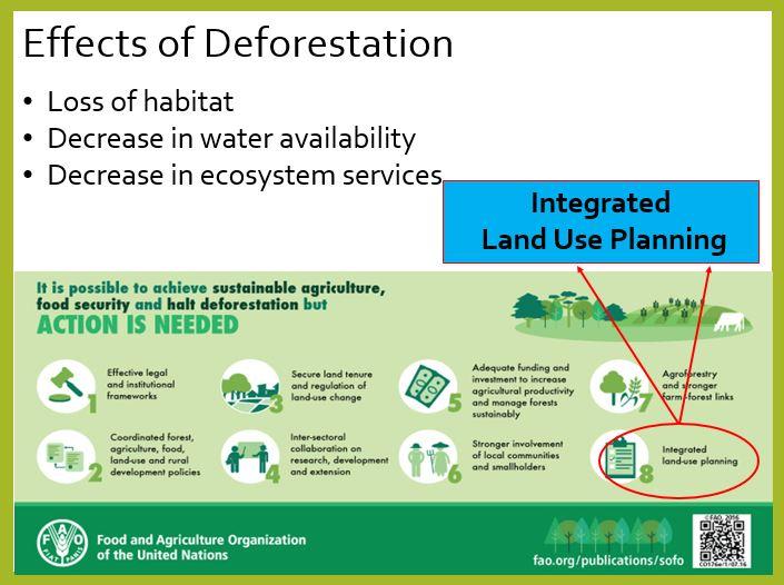 EffectsofDeforestation